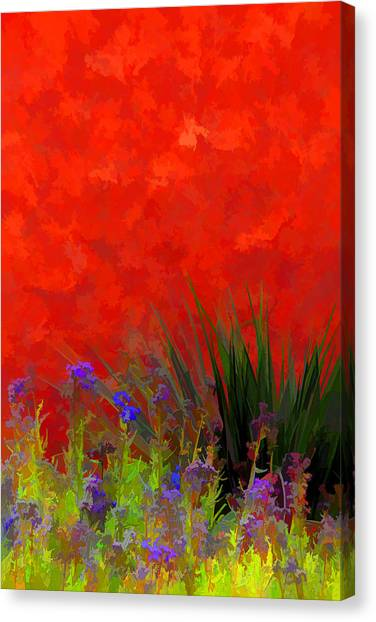 Red Stucco Wall Canvas Print