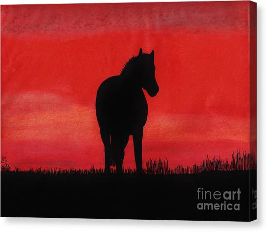 Red Sunset Horse Canvas Print