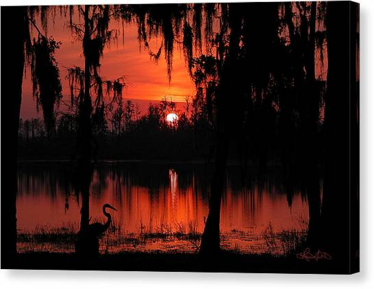 Red Swamp Canvas Print