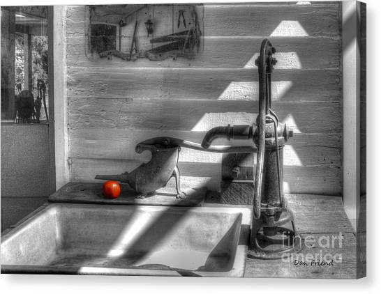 Red Tomato By Sink Canvas Print by Dan Friend