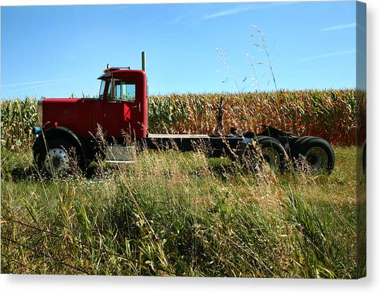 Red Truck In A Corn Field Canvas Print