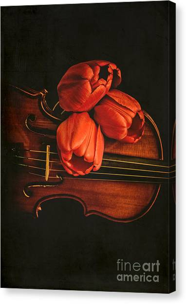 Fiddling Canvas Print - Red Tulips On A Violin by Edward Fielding
