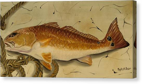 Redfish In The Boat Canvas Print