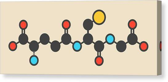 Ring species canvas prints fine art america ring species canvas print reduced glutathione molecule by molekuul ccuart Images