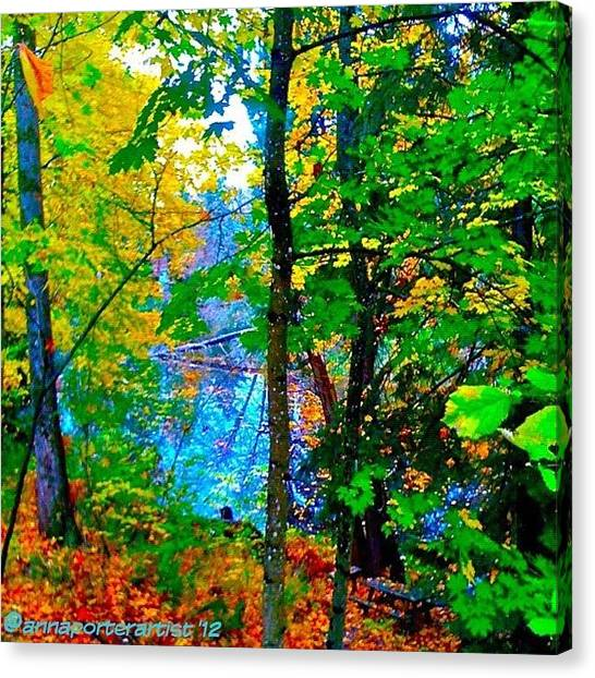 Apple Tree Canvas Print - Reed College Canyon Reflections Of Autumn by Anna Porter