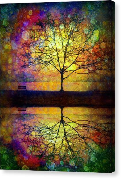 Reflected Dreams Canvas Print