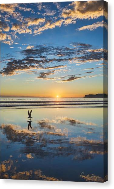 Reflected Flight Canvas Print