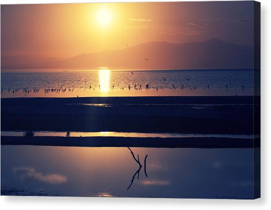 Canvas Print featuring the photograph Reflected by Mike Trueblood