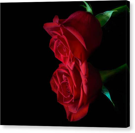 Reflecting Beauty Canvas Print