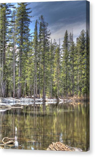 reflecting pond 4 Carson Spur Canvas Print