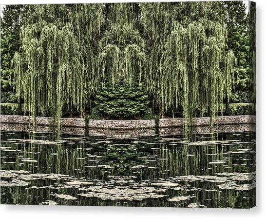 Reflecting Willows Canvas Print