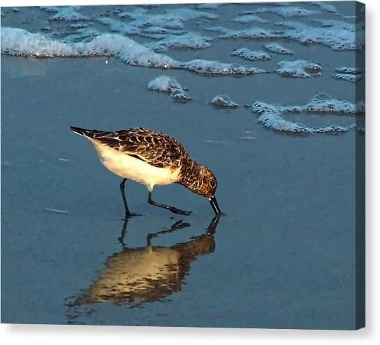 Reflection At Sunset Canvas Print