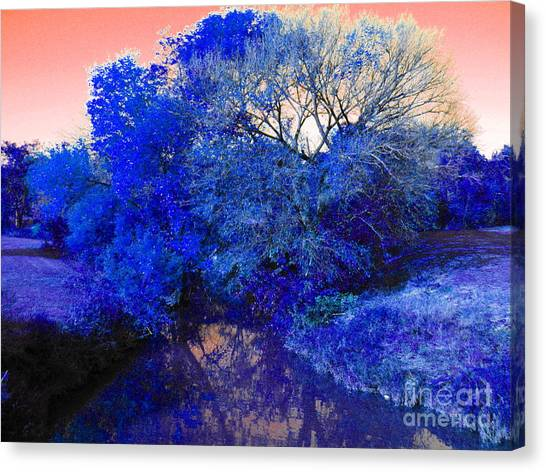 Reflection In Blue Canvas Print