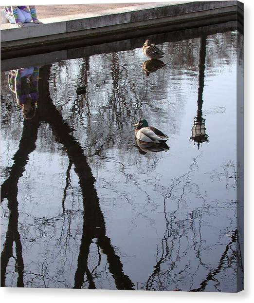 Reflection Of The Watcher Canvas Print by Jack Adams