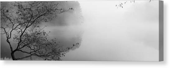 Foggy Forests Canvas Print - Reflection Of Trees In A Lake, Lake by Panoramic Images