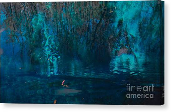 Reflection On The Water Canvas Print