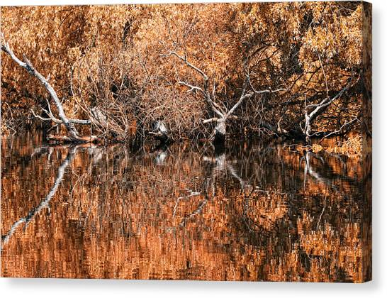 Reflections 11 Canvas Print by Vessela Banzourkova