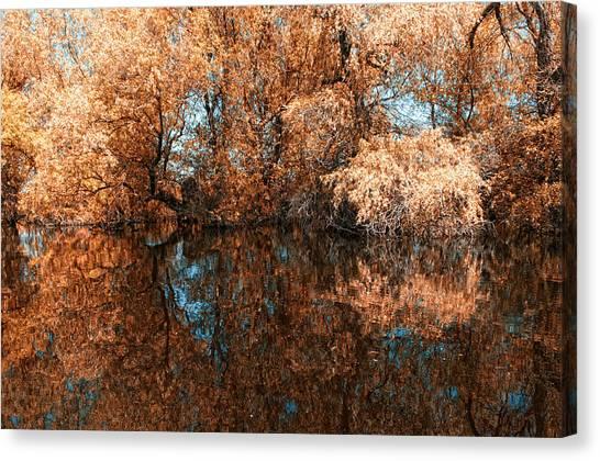 Reflections 2 Canvas Print by Vessela Banzourkova