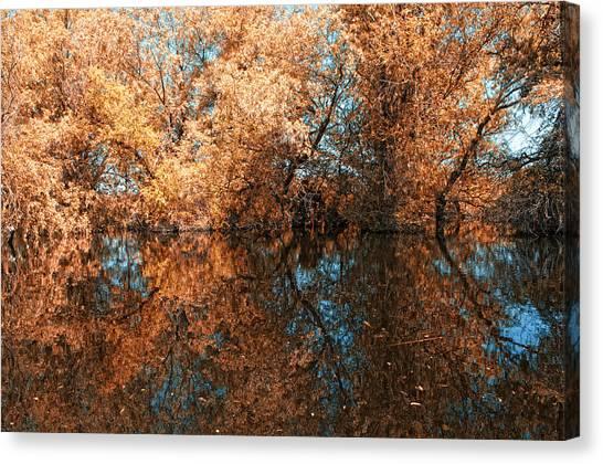 Reflections 3 Canvas Print by Vessela Banzourkova