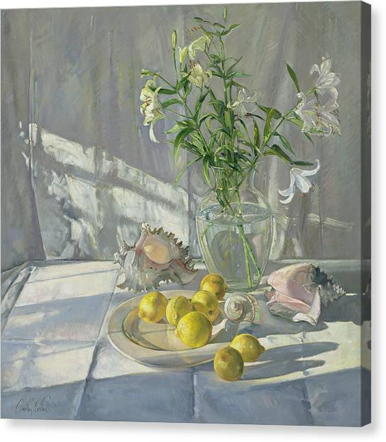 Spring Canvas Print - Reflections And Shadows  by Timothy  Easton