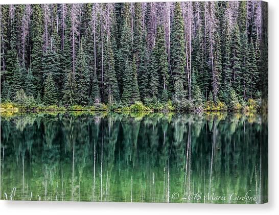 Reflections At Lightning Lake Canvas Print by Marie  Cardona