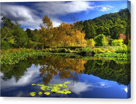 Reflections Canvas Print by Damian M Photographer