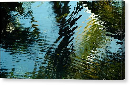 Reflections In A Fishpond Canvas Print