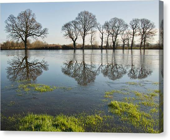 Reflections In Flood Water Canvas Print