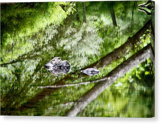 Reflections Of Van Campens Glen Canvas Print