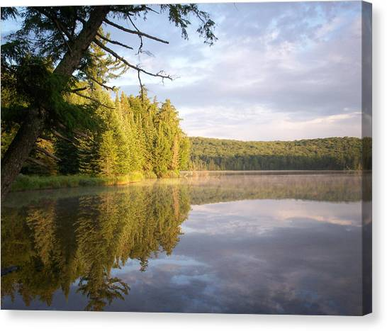 Reflections On Canisbay Lake Canvas Print