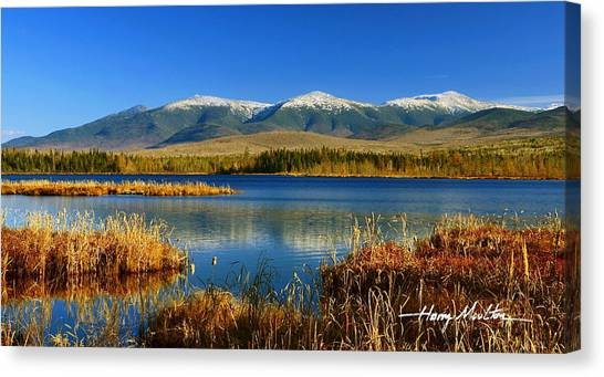 Reflections On Cherry Pond Canvas Print