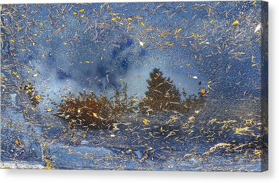 Reflections Canvas Print by Tom Kiebzak