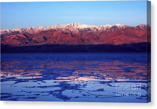 Reflex Of Bad Water Canvas Print