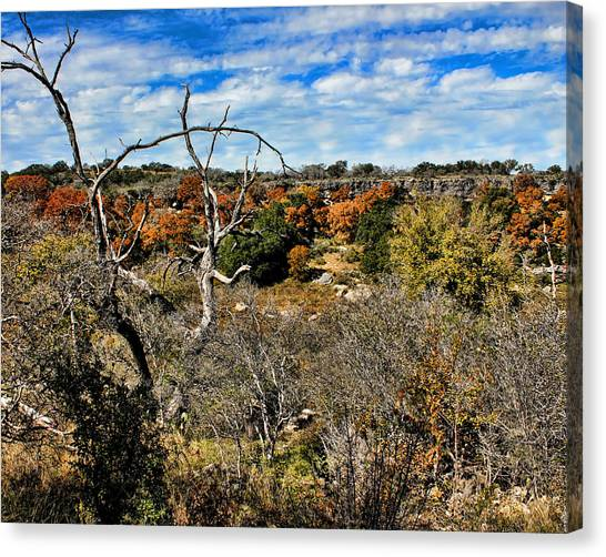 Brown Ranch Trail Canvas Print - Reimer's Ranch 2 by Judy Vincent