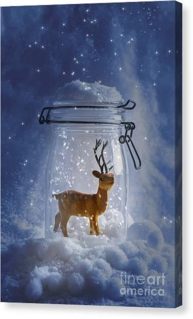 Snowball Canvas Print - Reindeer Snowglobe by Amanda Elwell