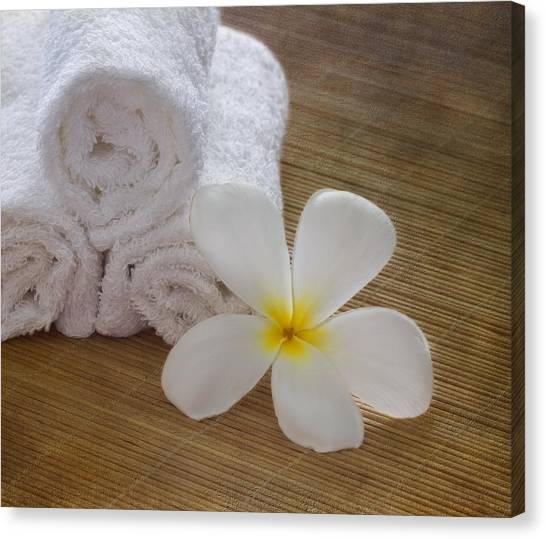 Relax At The Spa Canvas Print