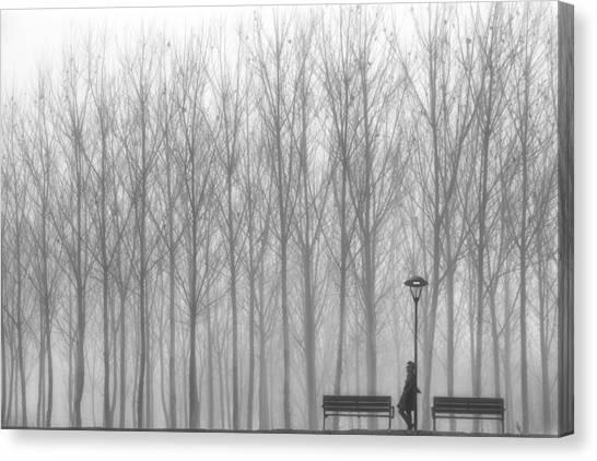 Bench Canvas Print - Relax by Francesco Deste
