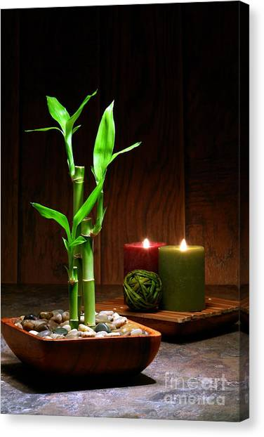Bamboo Canvas Print - Relaxation And Meditation  by Olivier Le Queinec