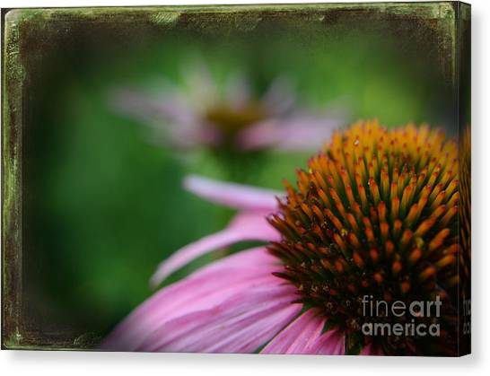 Remembering Renees Garden Canvas Print by The Stone Age