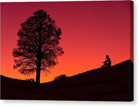 Orange Tree Canvas Print - Reminiscing by Chad Dutson