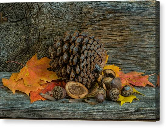 Remnants Of Fall Canvas Print