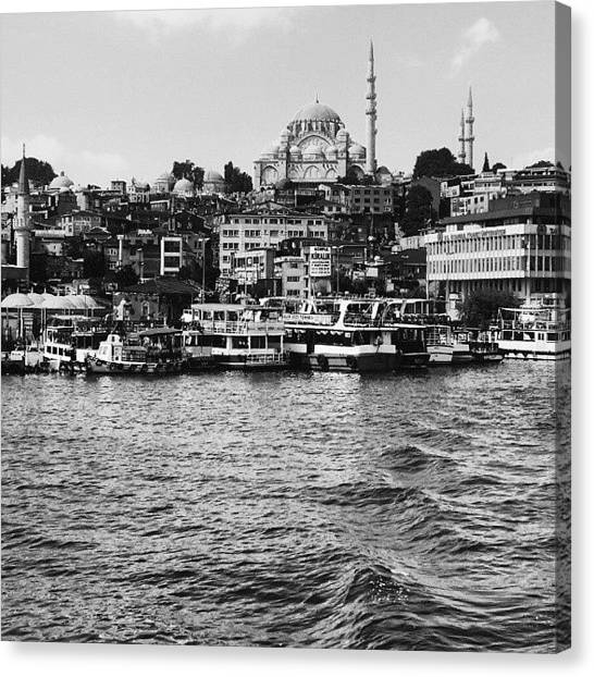 Tropical Birds Canvas Print - Istanbul Black And White by Bilal Sen