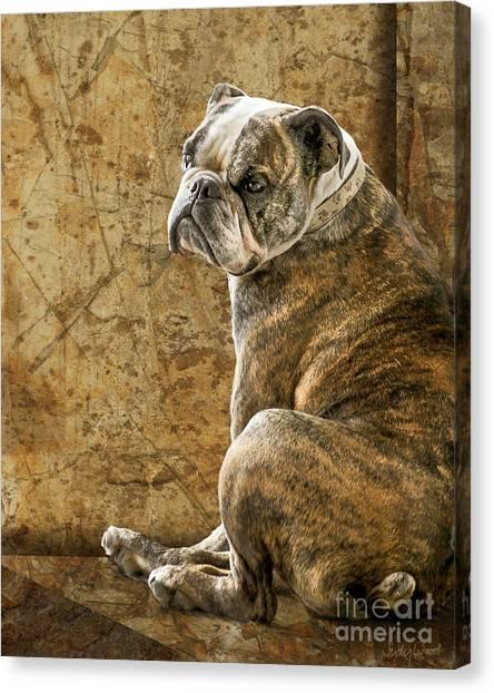 Bulldog Canvas Print - Resting Place by Judy Wood