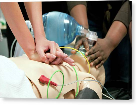 Dummies Canvas Print - Resuscitation Training by Life In View/science Photo Library
