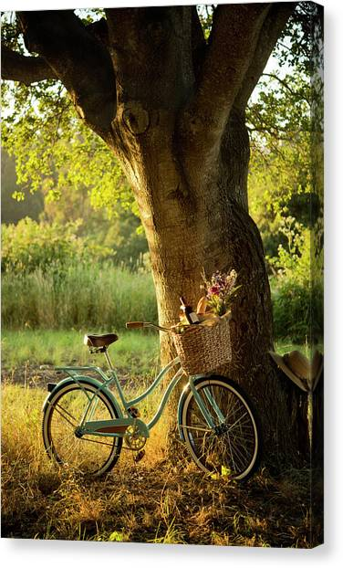 Retro Bicycle With Red Wine In Picnic Canvas Print by Nightanddayimages