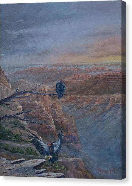Return Of The Condor Canvas Print