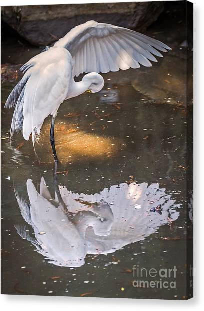Canvas Print featuring the photograph Revealed Close-up by Kate Brown