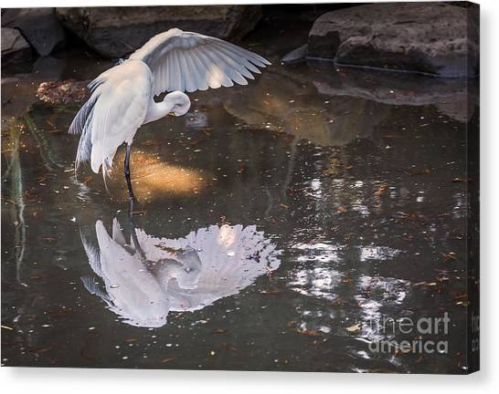 Canvas Print featuring the photograph Revealed Landscape by Kate Brown