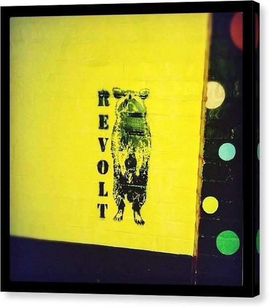 Raccoons Canvas Print - Revolt by Valerie Olivas