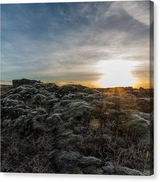 Lava Canvas Print - #reykjanes #iceland #lava #moss #sunset by Anna Sig